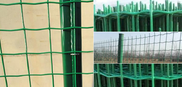Green Pvc Coated Garden Fencing Posts Holland Mesh Fence
