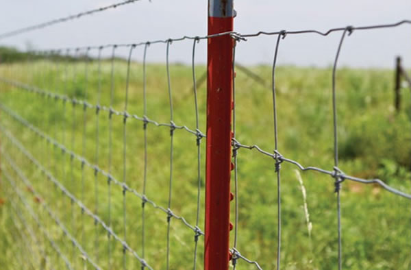 Steel Fence Posts Green Pvc Coated Or Galvanized For Chain