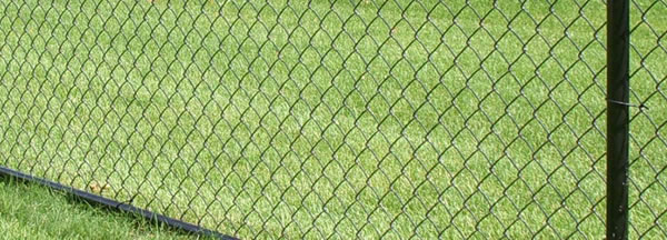 Galvanized Wire Mesh Chain Link Fence with Steel Fencing Posts